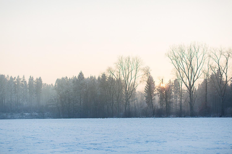 Schneelandschaft bei Medlingen