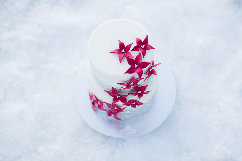 Wedding Cake Törtchen & Co