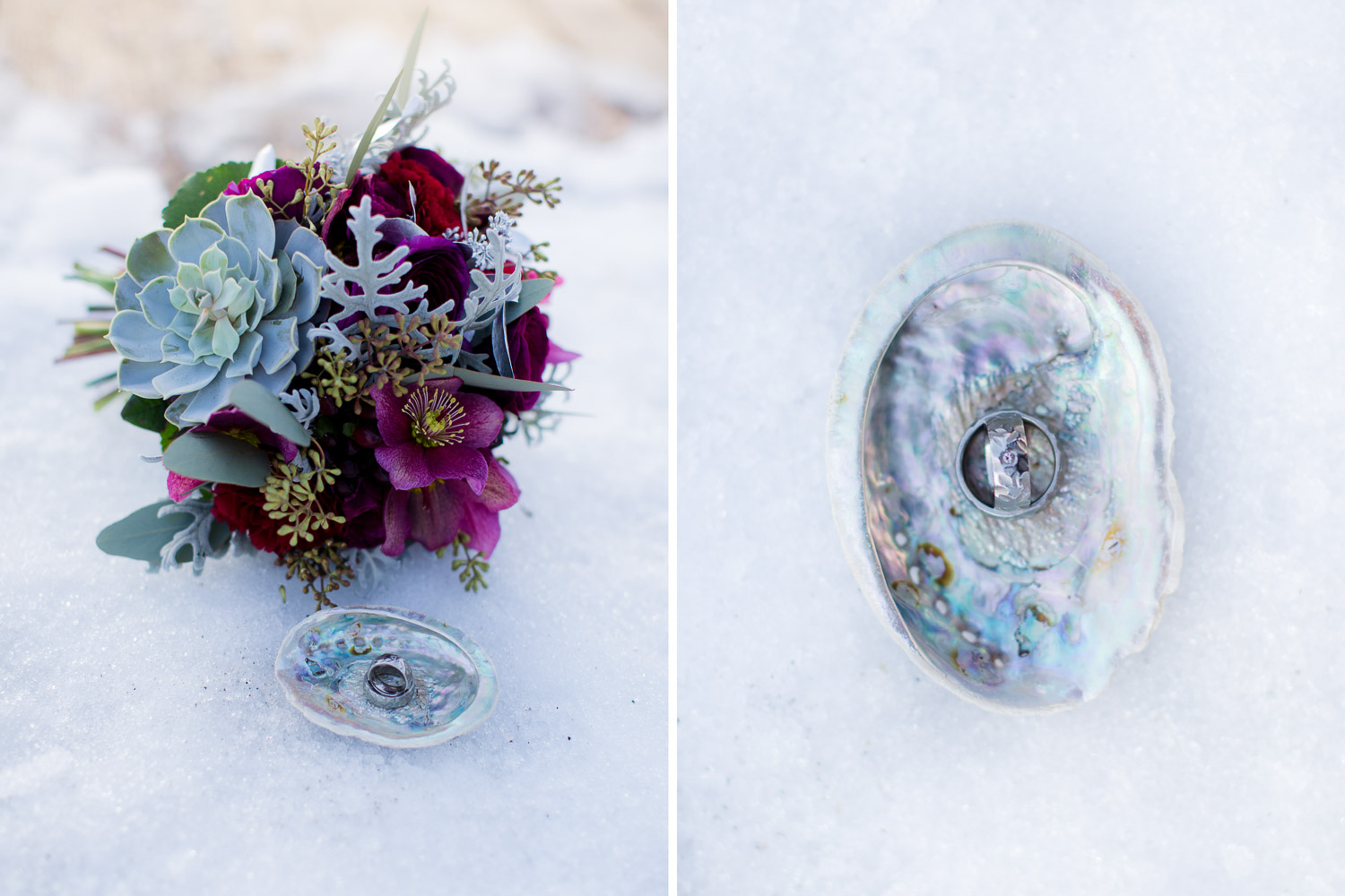 Inspiration Shooting Silver and Snow